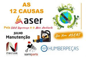 06 - As-12-causas-da-ASER