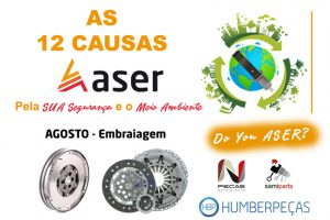 08 - As-12-causas-ASER