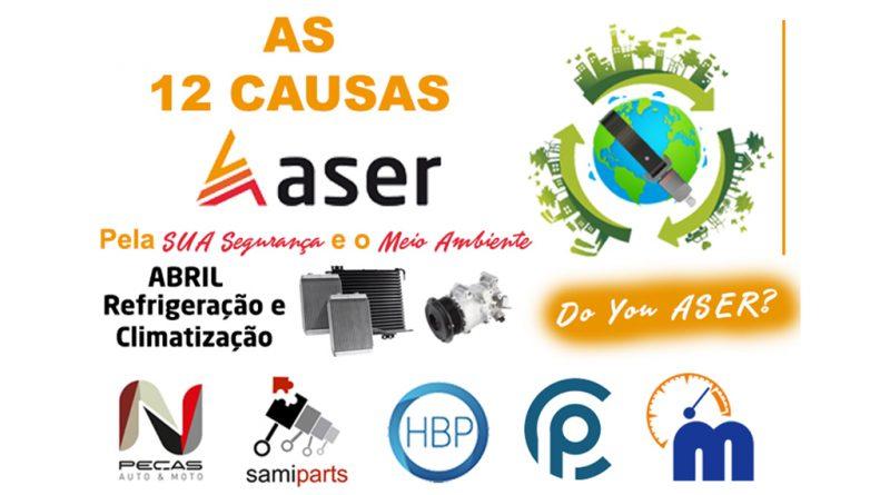 04 - 12-causas-ASER